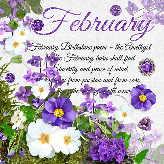 February Flower and Gemstone