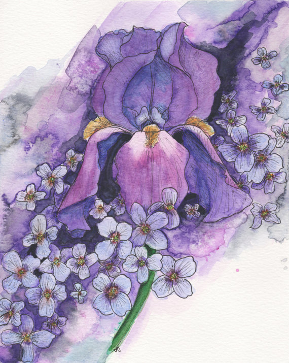 February Birth Flowers - Violet and Iris