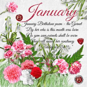 January Birthstone Color and Flower