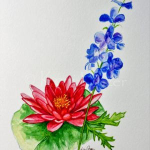 July Birthday Flowers - Larkspur and Water Lily